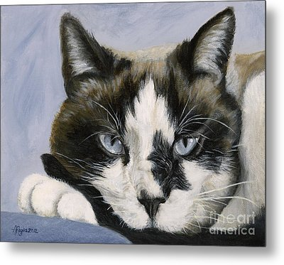 Calico Cat With Attitude Metal Print