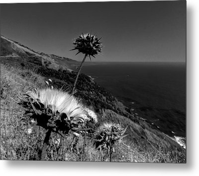 California - Big Sur 002 Metal Print by Lance Vaughn