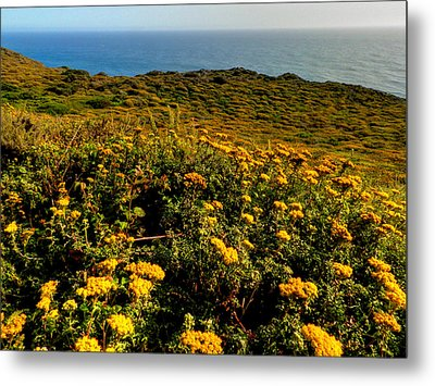 California - Big Sur 007 Metal Print by Lance Vaughn