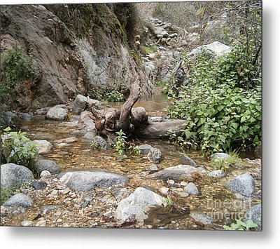 California Canyon 14 Metal Print by Drew Shourd