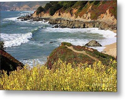 California Coast Overlook Metal Print by Carol Groenen