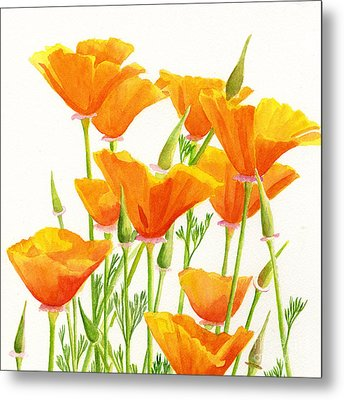 California Poppies Square Design Metal Print