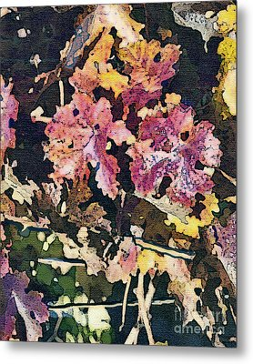 California Vineyard Series Fall Grape Leaves Metal Print by Artist and Photographer Laura Wrede