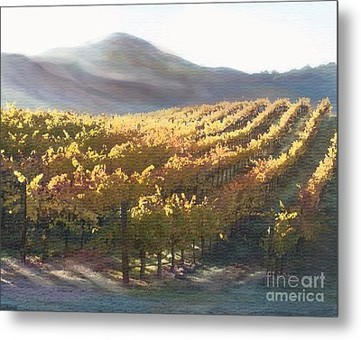 California Vineyard Series Vineyard In The Mist Metal Print by Artist and Photographer Laura Wrede