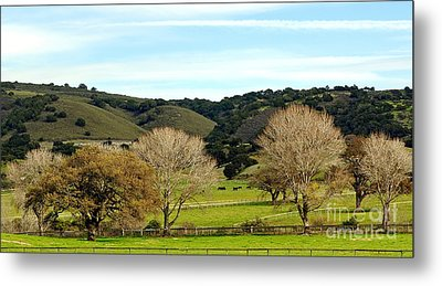 California Winter Landscape Metal Print by Susan Wiedmann