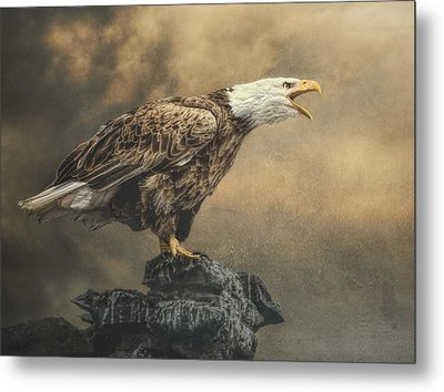 Metal Print featuring the photograph Call Of The Wild by Brian Tarr