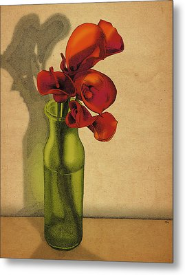 Calla Lilies In Bloom Metal Print by Meg Shearer