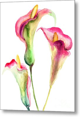 Calla Lily Flowers Metal Print
