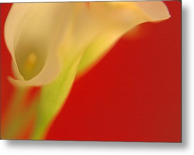 Callas On Red Metal Print