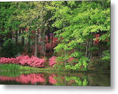 Callaway Gardens 1 Metal Print by Mountains to the Sea Photo