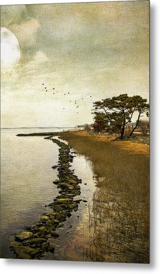 Calm At The Waters Edge Metal Print by John Rivera