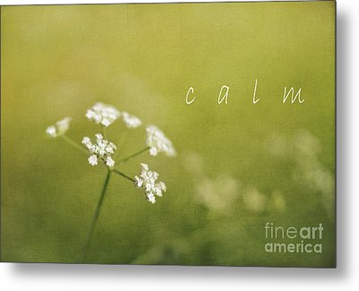 Calm Metal Print by Elena Nosyreva