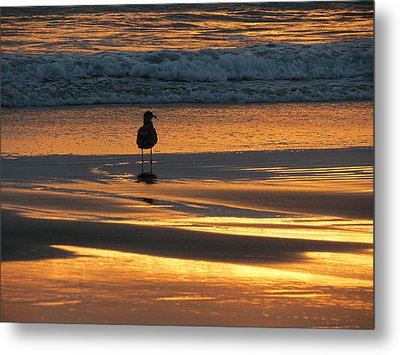 Metal Print featuring the photograph Calm by Ramona Johnston