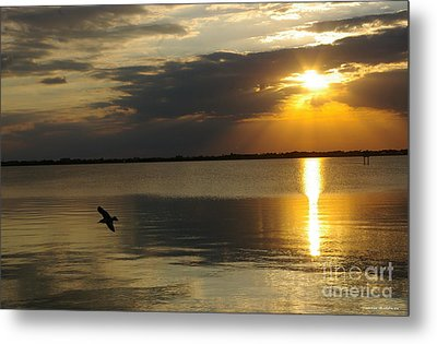 Calm Sunset Metal Print by Tannis  Baldwin