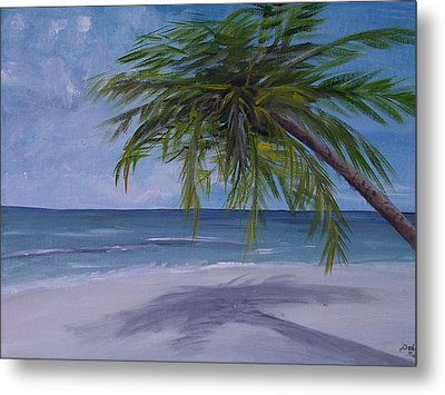 Metal Print featuring the painting Calm Waters by Debbie Baker