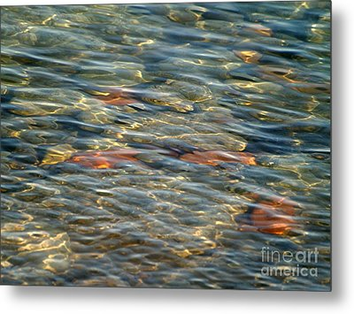 Calming Waters Metal Print by Susan  Dimitrakopoulos