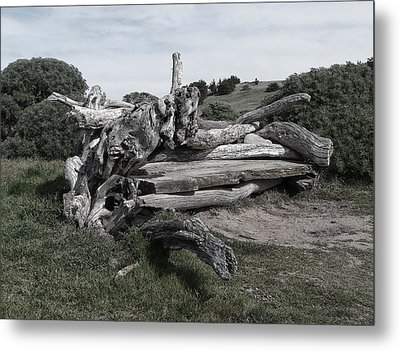 Cambria Driftwood Bench 3 Metal Print