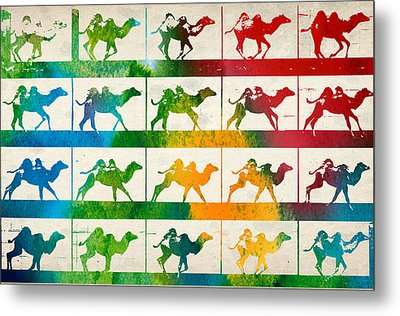 Camel Locomotion Metal Print by Aged Pixel