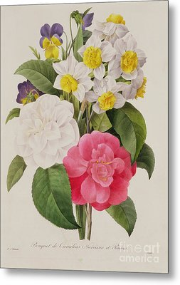 Camellias Narcissus And Pansies Metal Print by Pierre Joseph Redoute
