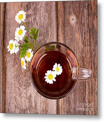 Camomile Tea Metal Print by Jane Rix