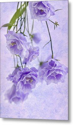 Campanella Blossoms Suspended - Macro Metal Print by Sandra Foster