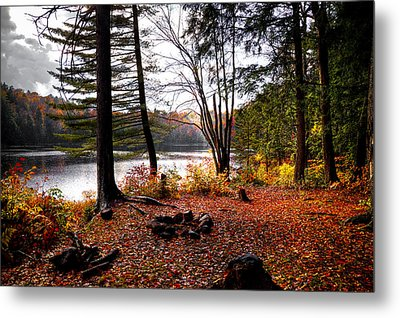 Campsite On Cary Lake Metal Print by David Patterson