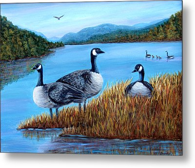 Metal Print featuring the painting Canada Geese - Lake Lure by Fran Brooks