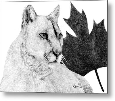 Canadian Cougar Metal Print by Kayleigh Semeniuk