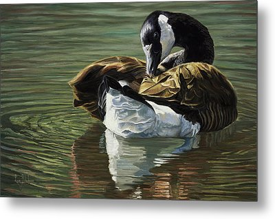 Canadian Goose Metal Print by Lucie Bilodeau