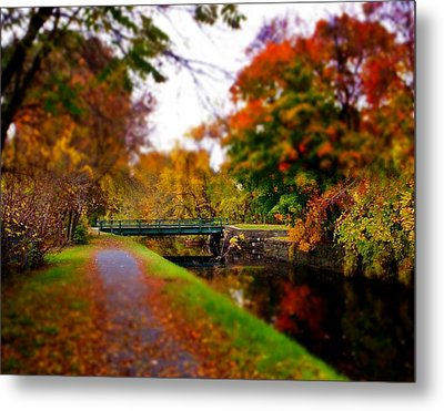 Canal Dream Metal Print by Rodney Lee Williams