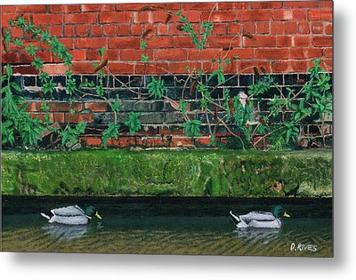 Canal Ducks Metal Print