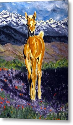 Candy Rocky Mountain Palomino Colt Metal Print by Jackie Carpenter