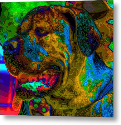 Cane Corso Pop Art Metal Print by Eti Reid
