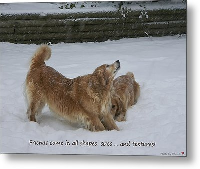 Canine Friends Metal Print by Rhonda McDougall