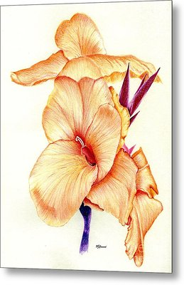 Canna Lilly Metal Print by Pamela Cawood