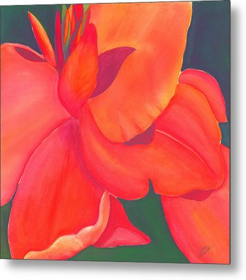 Canna Lily Metal Print by Debbra Nodwell-Bender