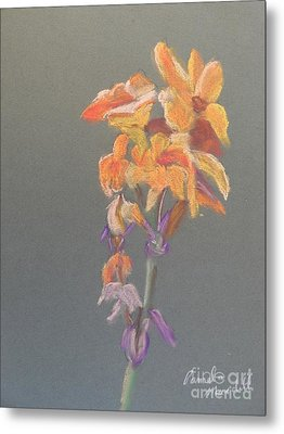 Canna Metal Print by Pamela  Meredith