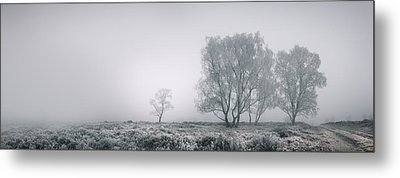 Cannock Chase Metal Print by Andy Astbury