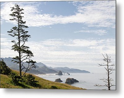 Cannon Beach At Ecola State Park Metal Print by David Gn