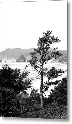 Cannon Beach Metal Print by David Patterson