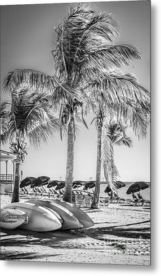 Canoes And Palms - Higgs Beach Key West - Black And White Metal Print by Ian Monk