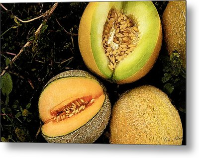 Cantaloupe Metal Print by Cole Black