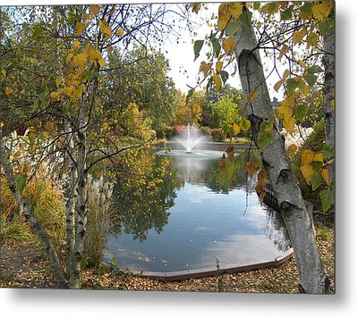 Metal Print featuring the photograph Cantigny Park by Teresa Schomig