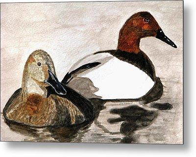 Canvasback Couple Metal Print