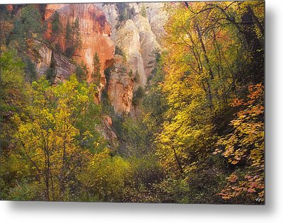 Canyon Kaleidoscope  Metal Print by Peter Coskun