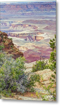 Canyon Lands Metal Print by Wanda Krack