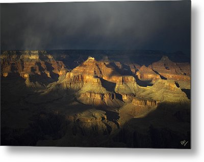 Canyon Light Metal Print by Peter Coskun