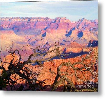 Canyon Shadows Metal Print