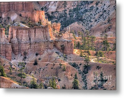 Canyon Trails Metal Print by Wanda Krack