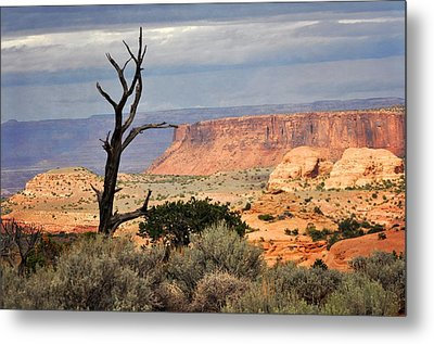 Canyon Vista 2 Metal Print by Marty Koch